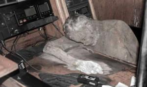 Manfred Fritz Bajorat mummia