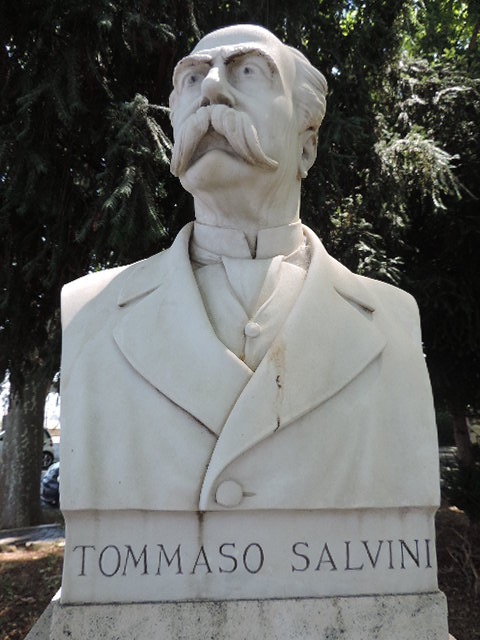 Tommaso Salvini
